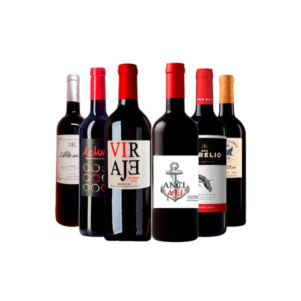 Pack 6 Vinos Tinto